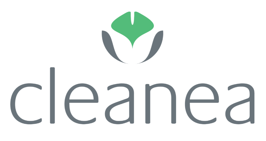 Logo Cleanea