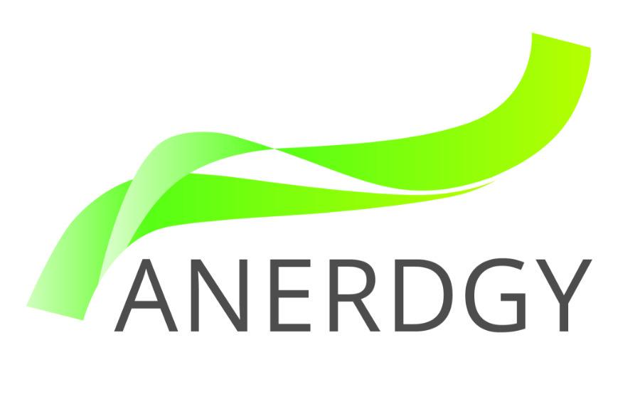 Logo ANERDGY
