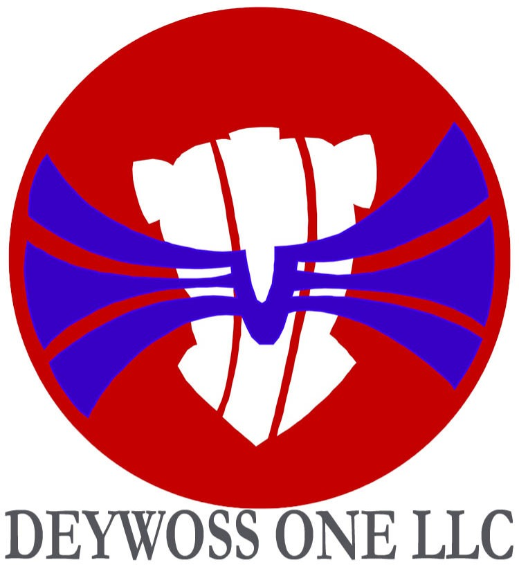 Logo DEYWOSS ONE LLC
