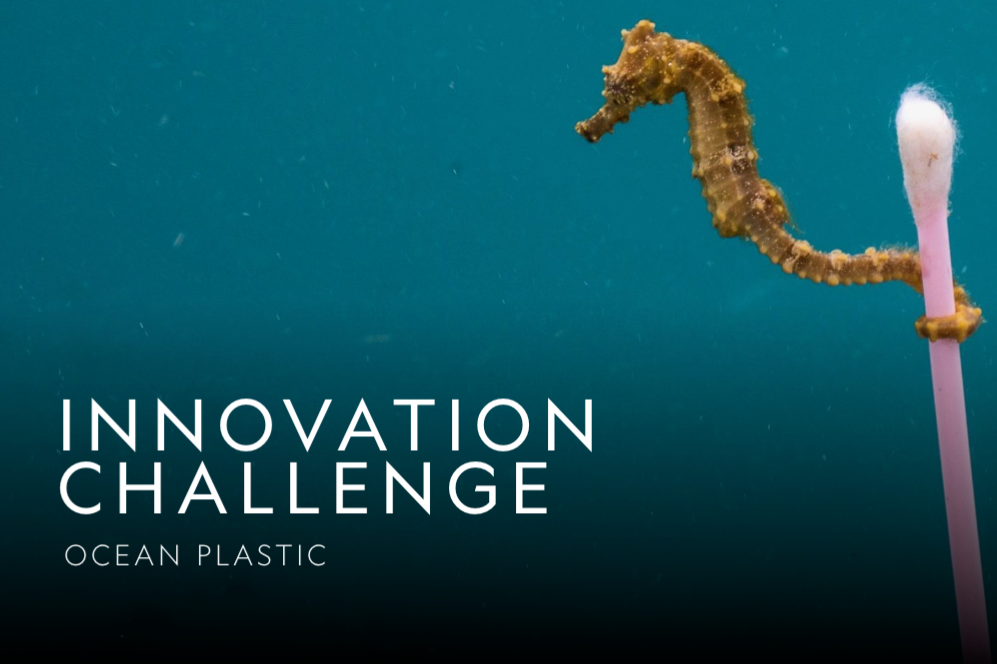 The Ocean Plastic Innovation Challenge