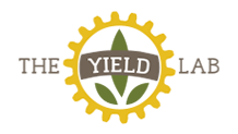 Investment The Yield Lab