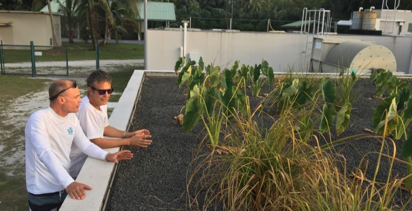 bertrand piccard en polynesie
