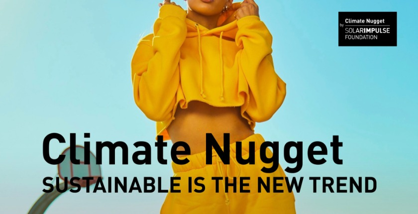 climate nugget