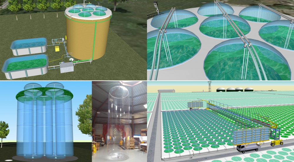 Offer Photobioreactor (PBR) for large scale culture of microalgae