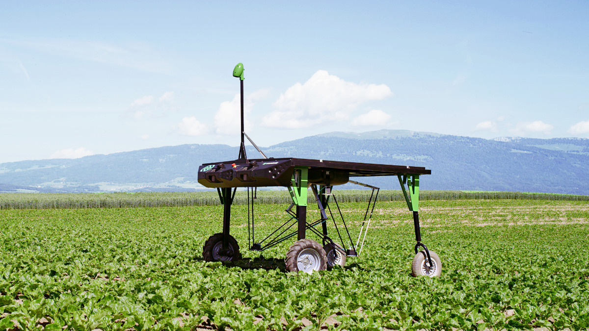 Offer High-precision weeding robot