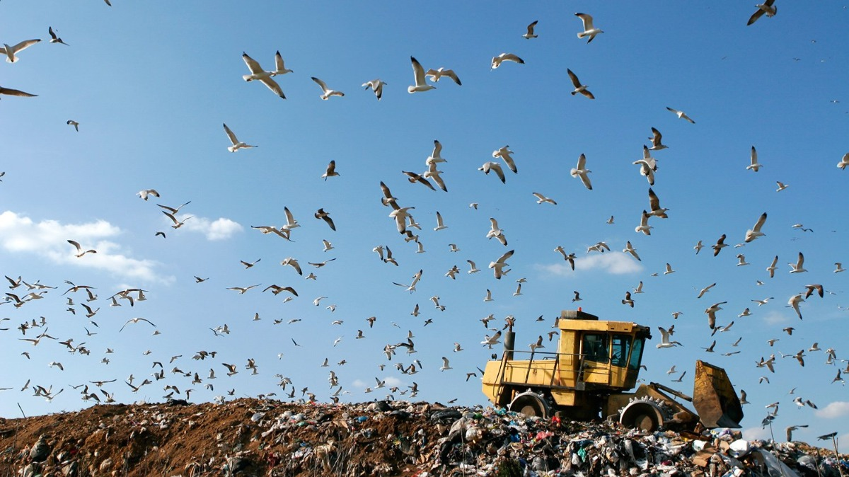Offer Treatment of landfill leachate