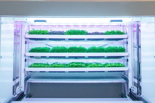 Gallery Next-Generation Vertical Farming 1