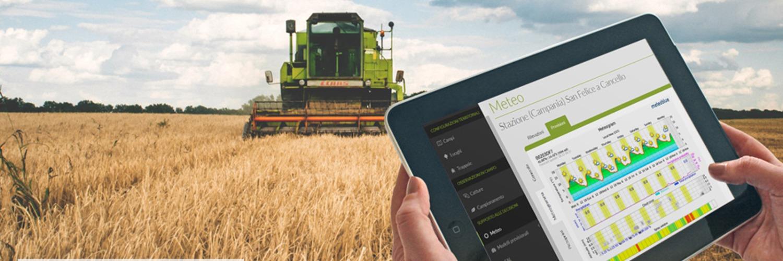 image de la solution Agricolus