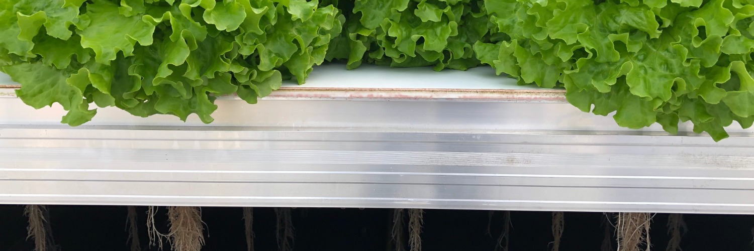 Gallery Mobile Aeroponics Farming 1