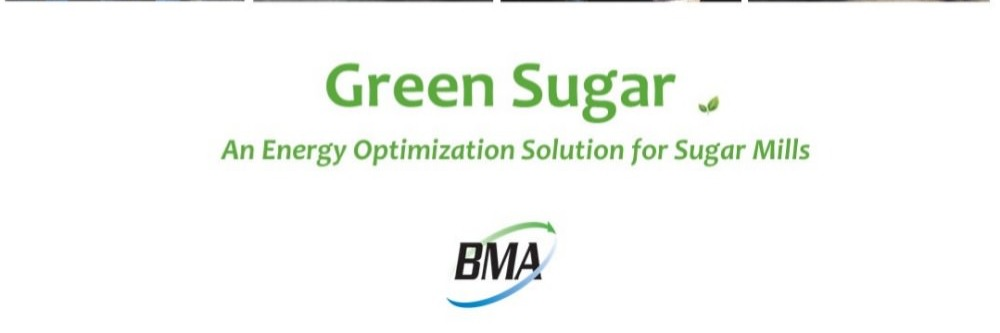 Gallery Green Sugar 1