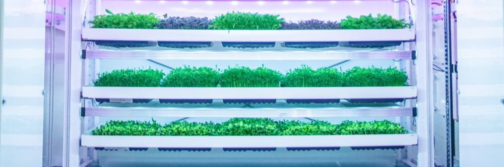 Gallery Next-Generation Vertical Farming 1