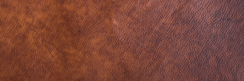 Gallery Celium® BioFabricated Leather 1