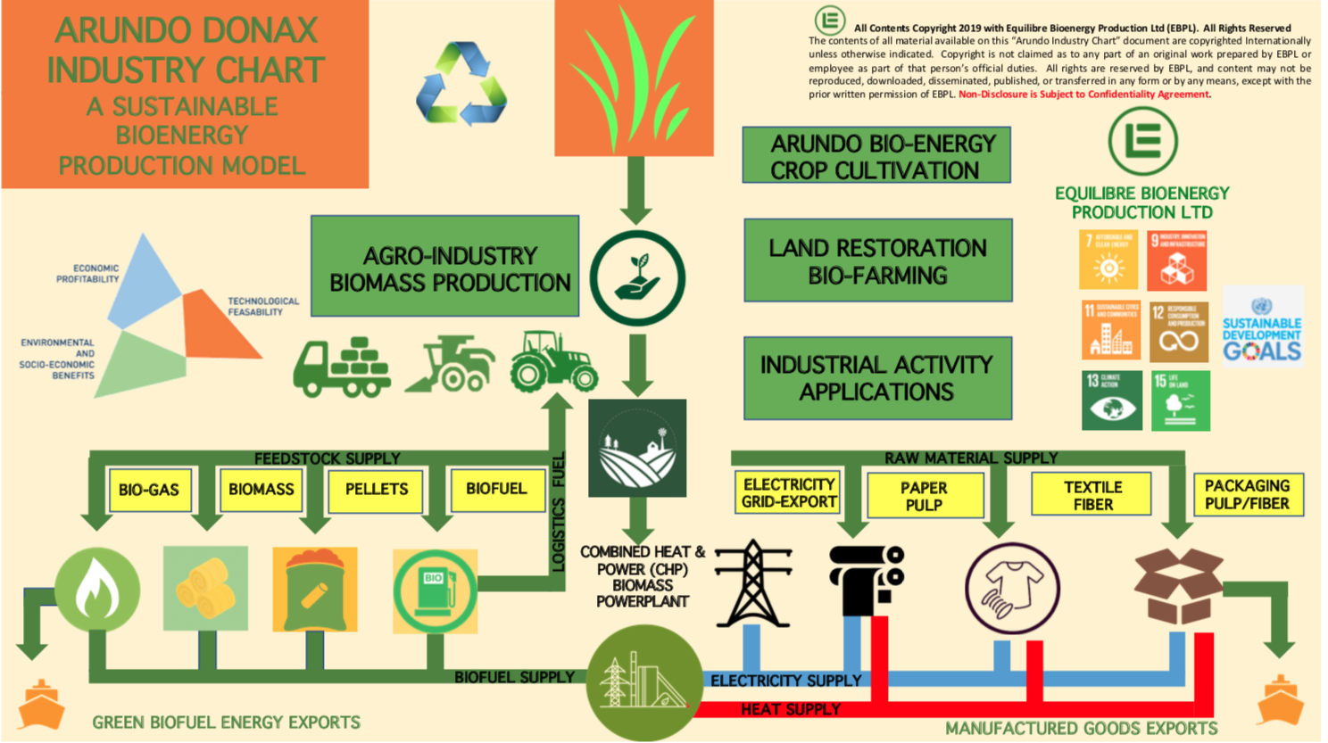 Gallery BIOENERGY, ELECTRICITY & FUEL PELLETS PRODUCTION FROM ARUNDO DONAX BIOMASS 2