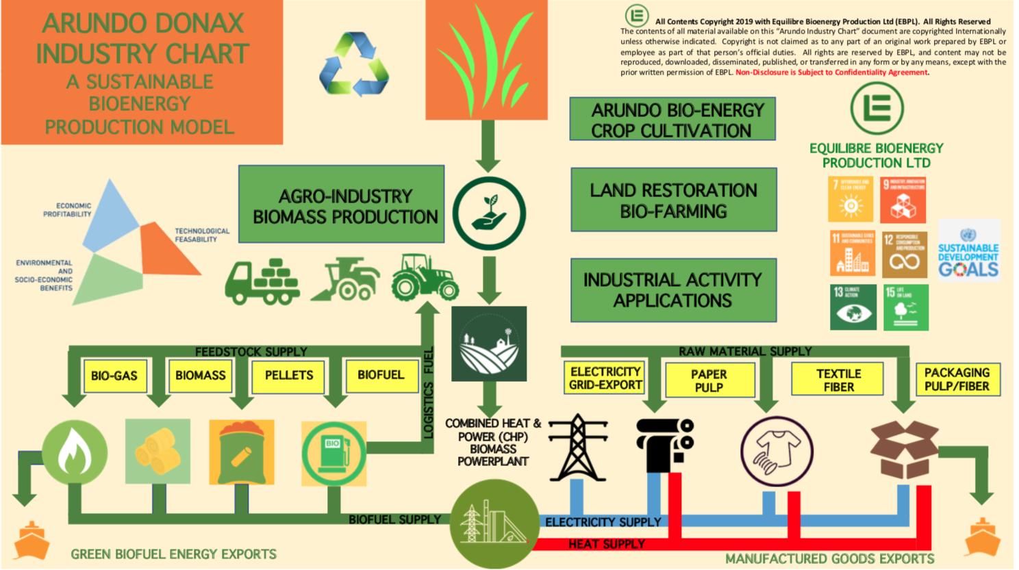Gallery Bioenergy from Arundo Donax Biomass 2