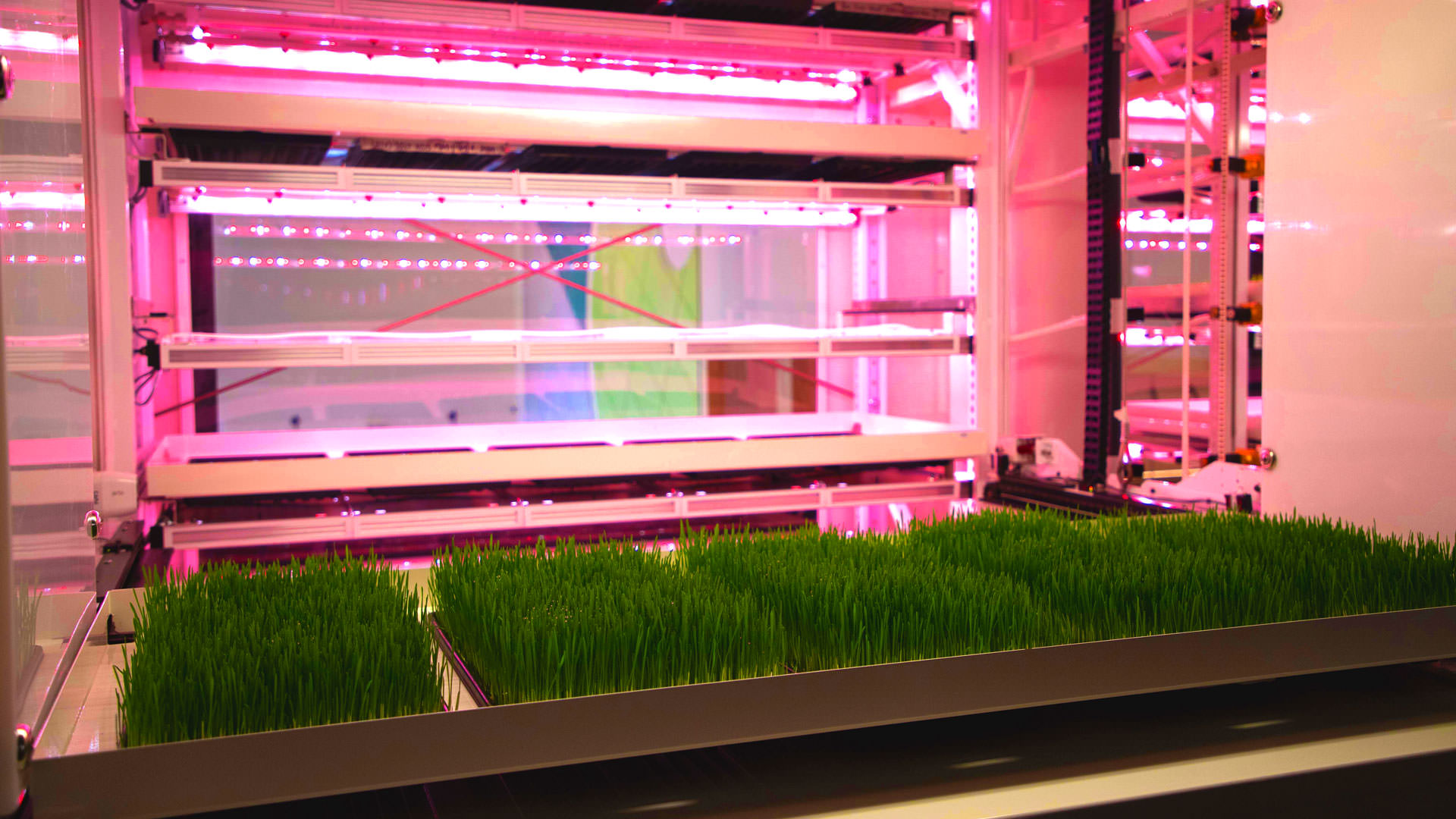 Gallery Next-Generation Vertical Farming 2