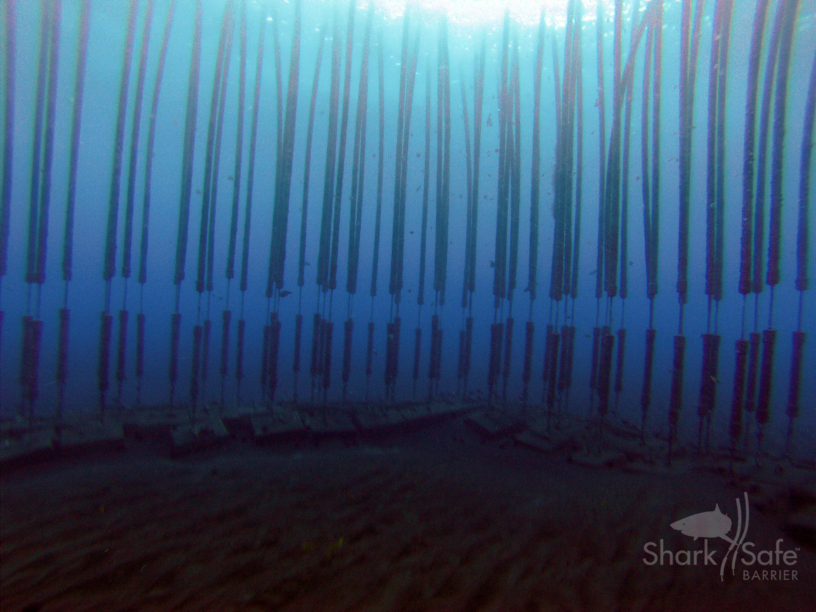 Gallery SharkSafe Barrier™ 3
