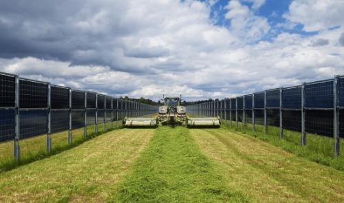 Gallery Agrivoltaic 3