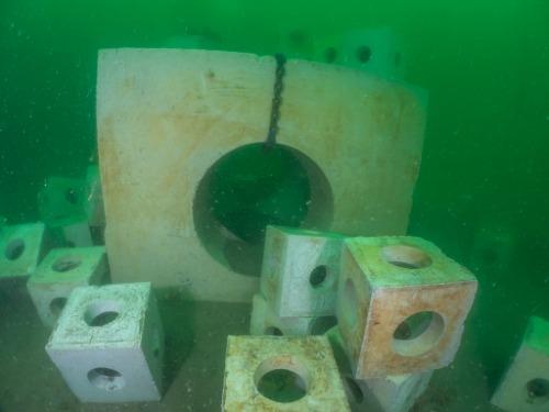 Gallery Reef Cubes® & Marinecrete  3
