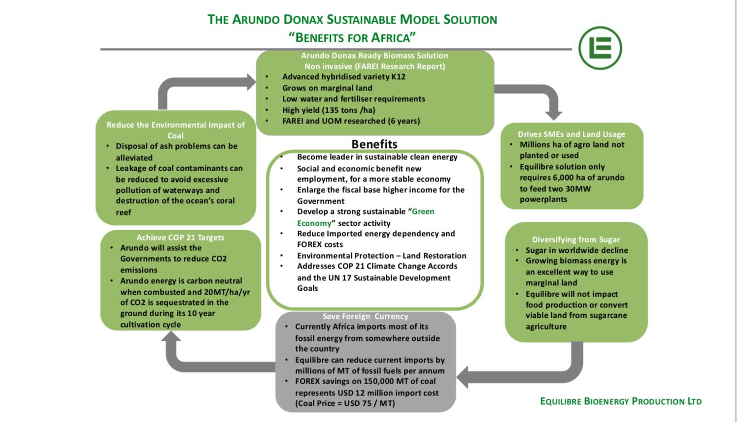 Gallery Bioenergy from Arundo Donax Biomass 4