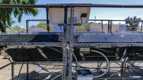 Gallery Mangrove Technology Platform 4