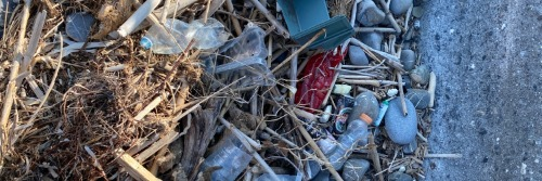 Gallery Global Database of Coastal Plastic Waste 4